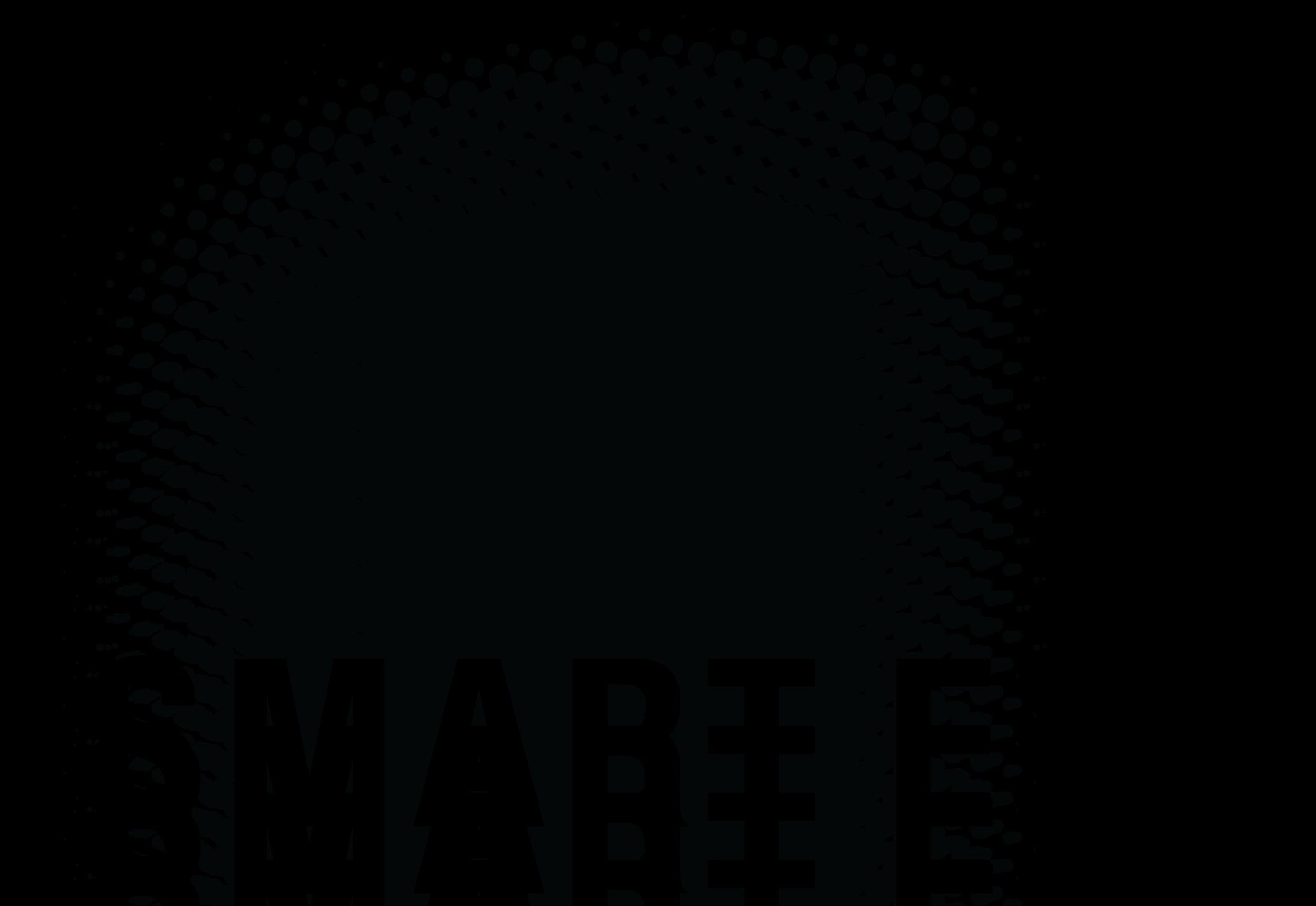OGAMA (OpenGazeAndMouseAnalyzer): An open source software